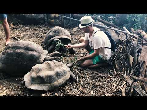 CzechTrip - Seychelles 2018 - Mahe, Pralin, La Digue - Dji S