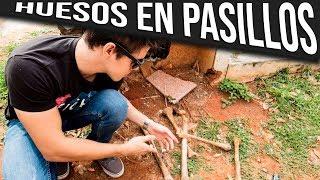 HUESOS EN LOS PASILLOS... | El Cementerio del olvido