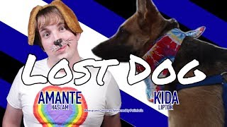 Matt Haslam - Lost Dog