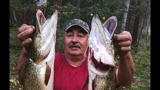 Рыбалка Ловим щуку на Богучанском водохранилище