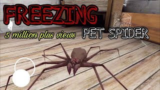 GRANNY - FREEZING PET SPIDER | GAMEPLAY IOS,ANDROID