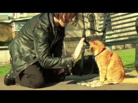 Bob, der Streuner: Die Katze, die mein Leben veränderte YouTube Hörbuch Trailer auf Deutsch