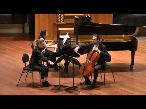 Fluctuations for piano trio by Stephen Lebsanft