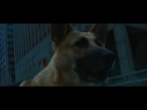 I Am Legend .... Brave Sam / Samantha Defends Her Master ( Full Scene )