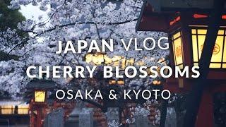 Japan Vlog - Sakura in Osaka & Kyoto (桜・花見)