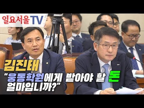 """[2019 국정감사] 김진태 """"웅동학원에게 받아야 할 돈 얼마입니까?"""""""