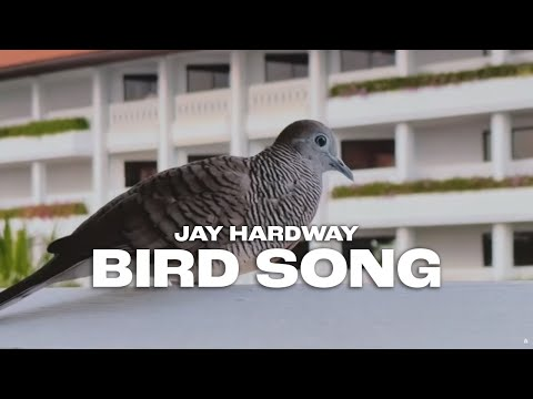 Jay Hardway – Bird Song