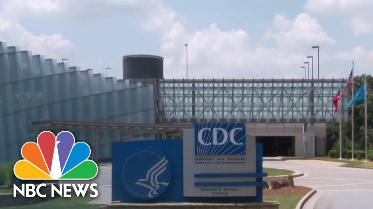 Download CDC Calls Covid-19 Delta Variant A 'Concern'