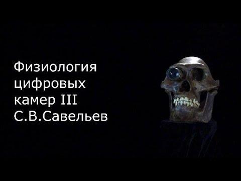 С.В. Савельев. Сравнительная