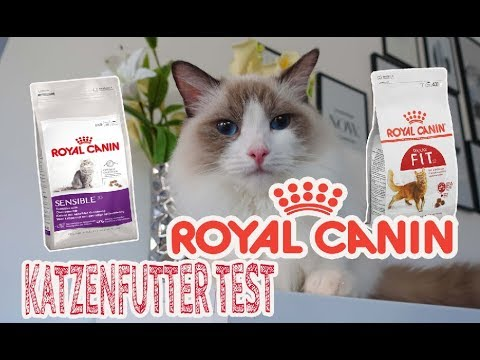 royal canin katzenfutter im test trockenfutter. Black Bedroom Furniture Sets. Home Design Ideas