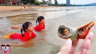 หนูยิ้มหนูแย้ม   เล่นน้ำทะเล จับปูเสฉวน