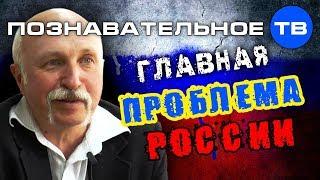 Made in Russia - главная проблема России (Познавательное ТВ, Михаил Величко)