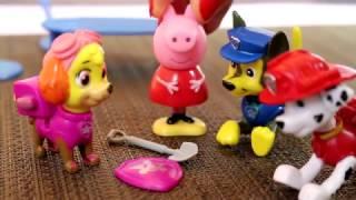 Bajka Świnka Peppa po polsku i Psi Patrol odnajdują odznakę Psiego Patrolu - zabawki