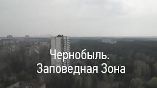 Чернобыль. Заповедная зона(Зона или заповедник? Знаете, чем отличается
