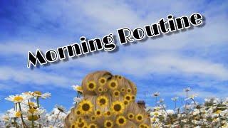 Morning Rountine~pastel_ vibes~|| roblox.bloxburg||