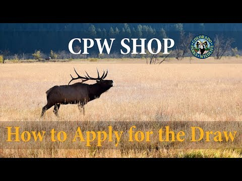 UPDATED FOR 2019: How To Apply For The Big Game Draw