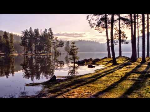 Annie Fischer - Bartók - 15 Hungarian Peasant Songs