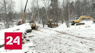 Возмутившая жителей Подмосковья вырубка леса оказалась благоустройством - Россия 24