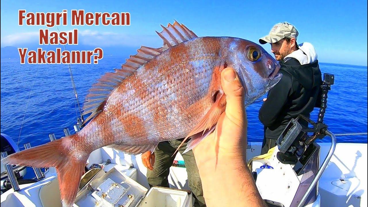 Yeni Merada Çok Farklı Balıklar Yakaladık / Efsane Yöntem !!