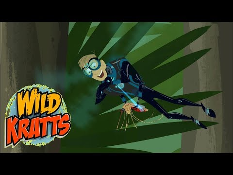 Wild Kratts PBS  Fireflies  Wild Kratts 2018 Full Episodes 12