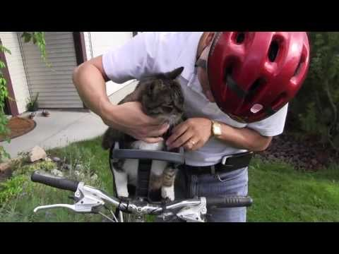 Mozart's first ride on the Buddyrider Bicycle Pet Seat