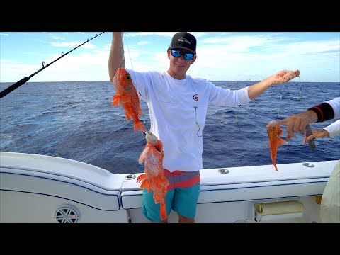 UNFAIR Fishing Rig... Catch Clean Cook - Blackbelly Rose Fish (Deep Drop)