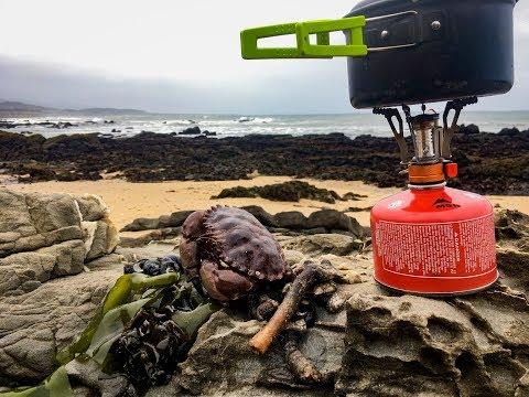 Coastal foraging: Making seafood chowder + weird giant sea creature