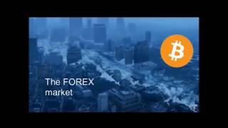 Bitcoin vs Everything