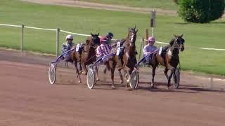 Vidéo de la course PMU PRIX DU LAC DE JOUX