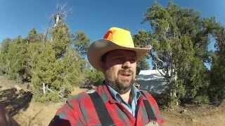 Unit 61 Mule Deer hunt
