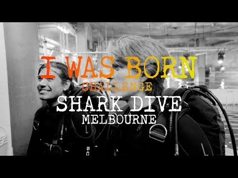 I Was Born Challenge: Shark Dive Melbourne
