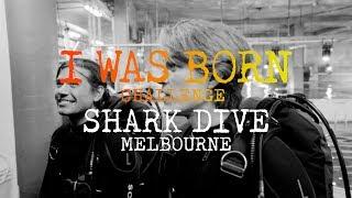 I Was Born Challenge: Shark Dive Melbourne