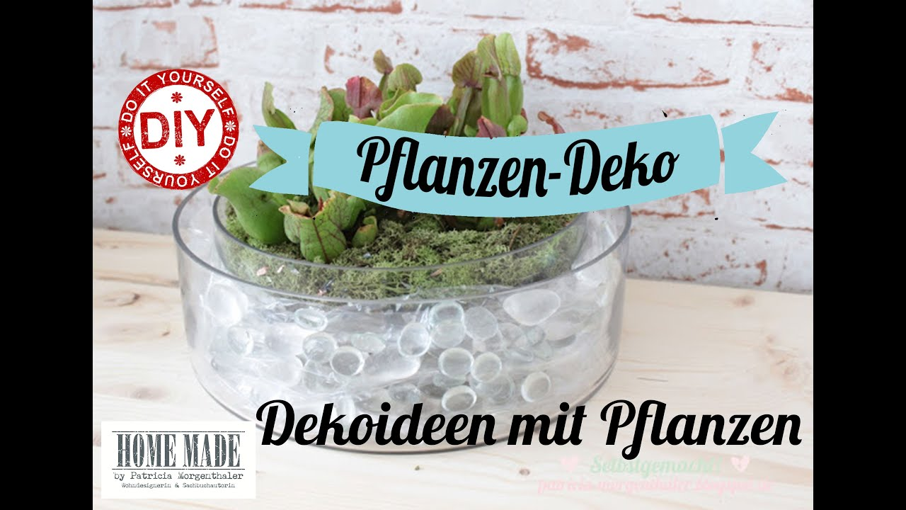 How To I Deko-Ideen mit Pflanzen I Deko Inspirationen Selbstgemacht ...