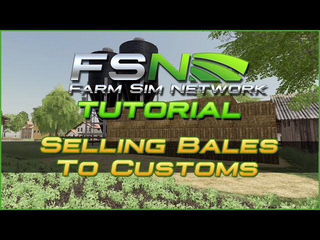 Selling Bales to Customs | Farm Sim Network (FSN) Tutorial #17
