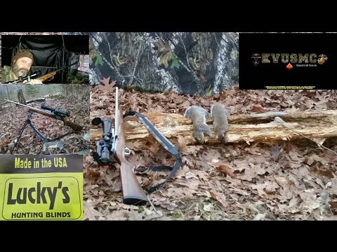Ruger 10/22 Squirrel Hunting ! In Lucky's Hunting Blinds / Two Man Gun Blind By KVUSMC