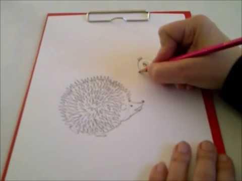 Zeichnen Lernen Fur Anfanger Und Kinder Igel Malen Sehr Einfach