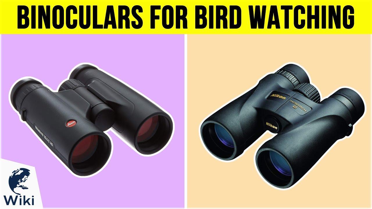 Best Binoculars For Birding 2020 10 Best Binoculars For Bird Watching 2019   YouTube
