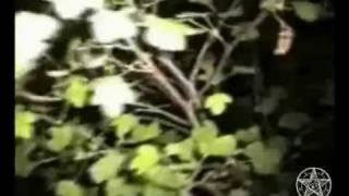 Призраки, привидения и демоны. 3 часть