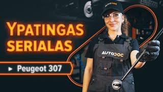 Montavimas Rėmas, stabilizatoriaus tvirtinimas HONDA NSX Coupe (NA): nemokamas video