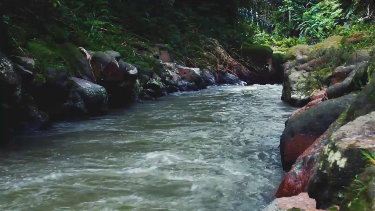 35+ Ide Animasi Air Sungai Mengalir - Nico Nickoo