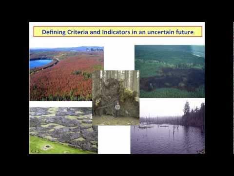 Ellen Macdonald - Criteria and Indicators of Resilience