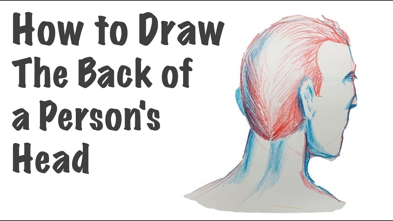 How to Draw the Back of a Person's Head