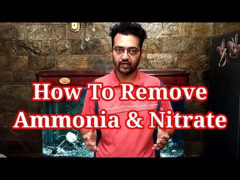 How To Remove Ammonia & Nitrate In Aquarium / Ammonia In Fish Tank / Nitrate In Fish Tank / How To ?