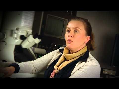 Annette Gunnæs