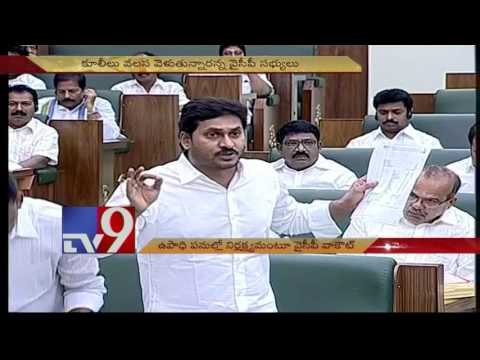 YCP Walks Out Of AP Assembly Over Rural Employment Guarantee Scheme - TV9