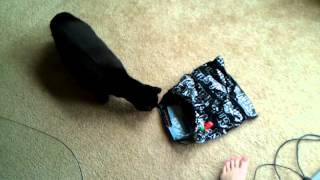 Cute cats jump high scared of bag