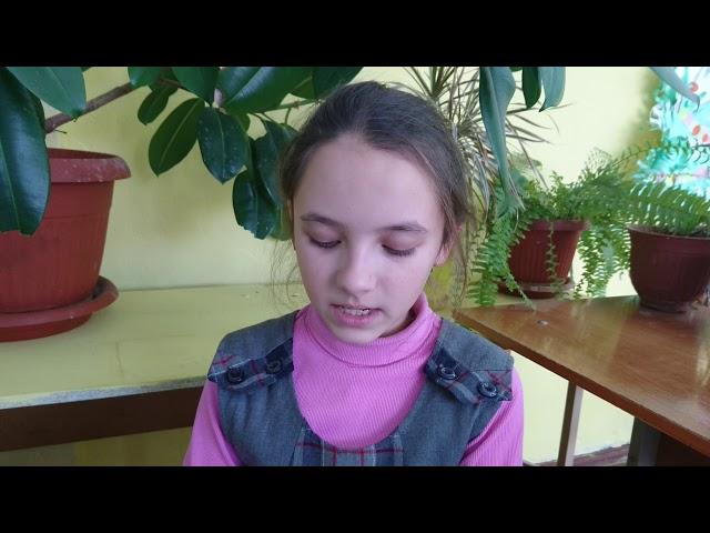Изображение предпросмотра прочтения – МадинаБрюханова читает отрывок изпроизведения «Дети подземелья» В.Г.Короленко