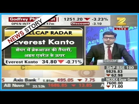 Stocks of Hind Copper, Everest Kanto, MRPL etc recommended for trade in smallcap radar