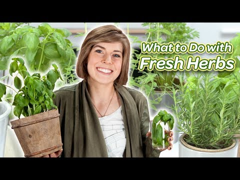 What To Do With Fresh Herbs | You Can Cook That | Allrecipes.com