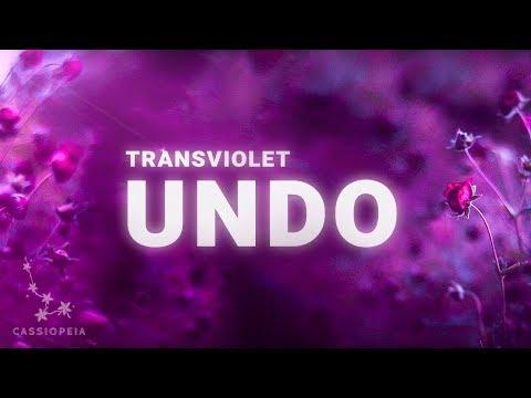 Transviolet - Undo (Lyrics)